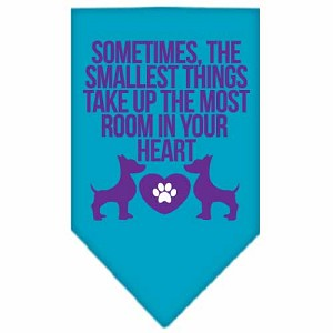 Smallest Things Screen Print Bandana Turquoise Large